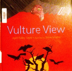 VultureViewCover